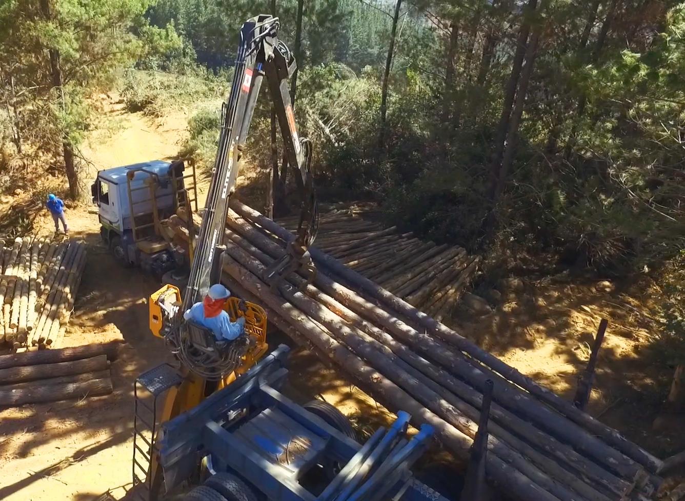 entrega oportuna de madera impregnada