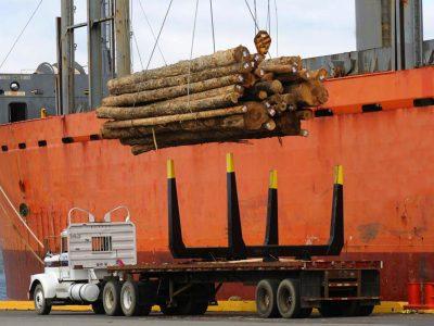 Exportacion de madera chilena