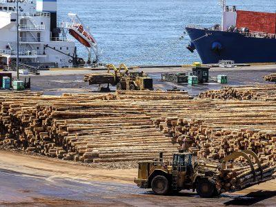 Postes de madera para la exportacion