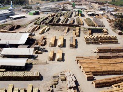 madera para la exportacion